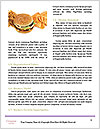 0000088164 Word Templates - Page 4