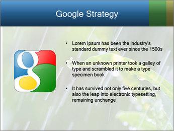 Seasonal Rain PowerPoint Template - Slide 10