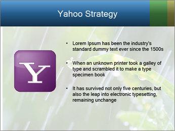 Seasonal Rain PowerPoint Template - Slide 11