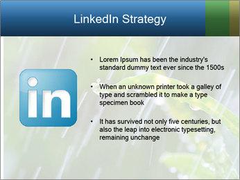 Seasonal Rain PowerPoint Template - Slide 12