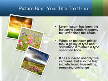 Seasonal Rain PowerPoint Templates - Slide 17