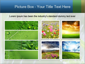 Seasonal Rain PowerPoint Templates - Slide 19