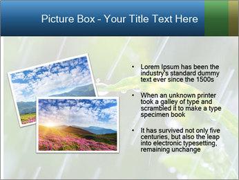 Seasonal Rain PowerPoint Template - Slide 20