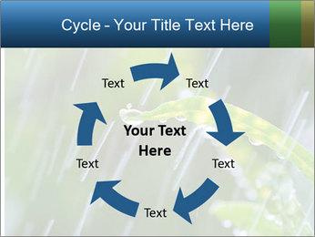Seasonal Rain PowerPoint Template - Slide 62