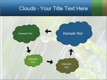 Seasonal Rain PowerPoint Template - Slide 72