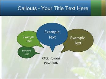 Seasonal Rain PowerPoint Template - Slide 73