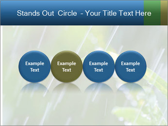 Seasonal Rain PowerPoint Template - Slide 76