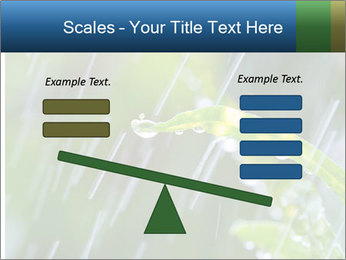 Seasonal Rain PowerPoint Template - Slide 89