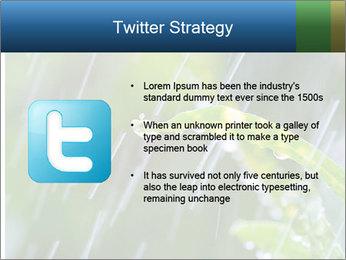 Seasonal Rain PowerPoint Template - Slide 9