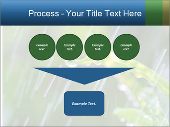 Seasonal Rain PowerPoint Templates - Slide 93