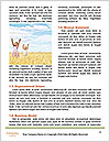 0000088175 Word Templates - Page 4