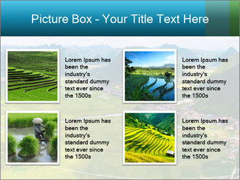 Rice field in valley PowerPoint Template - Slide 14