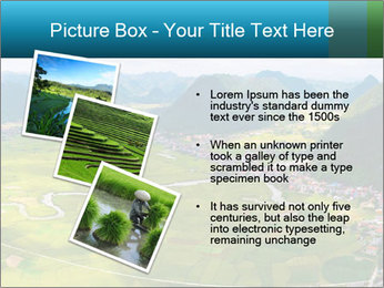 Rice field in valley PowerPoint Template - Slide 17