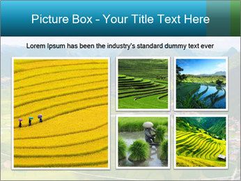Rice field in valley PowerPoint Template - Slide 19
