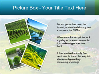 Rice field in valley PowerPoint Template - Slide 23