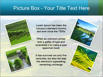 Rice field in valley PowerPoint Template - Slide 24