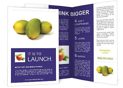 0000088186 Brochure Templates