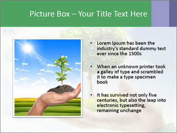 Small tree in a hand businessman PowerPoint Template - Slide 13