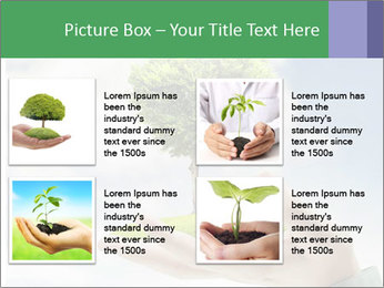Small tree in a hand businessman PowerPoint Template - Slide 14