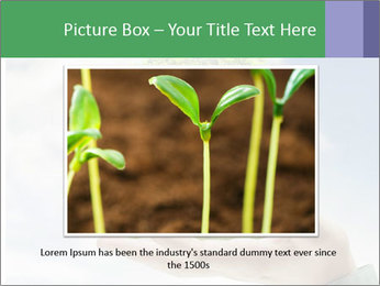 Small tree in a hand businessman PowerPoint Template - Slide 16