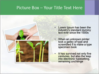 Small tree in a hand businessman PowerPoint Template - Slide 20