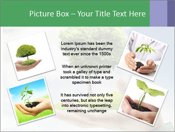 Small tree in a hand businessman PowerPoint Template - Slide 24
