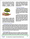 0000088187 Word Template - Page 4