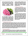 0000088194 Word Templates - Page 4