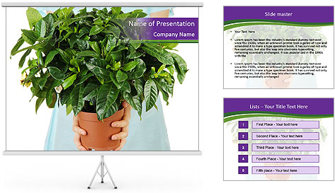 Beautiful flower in pot in hands of girl PowerPoint Template