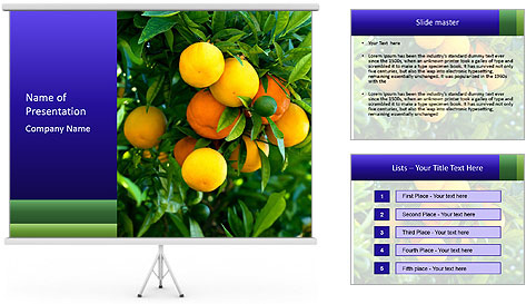 Bunch of ripe oranges hanging on a tree PowerPoint Template