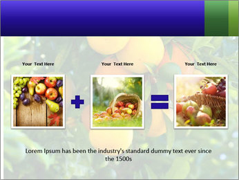 Bunch of ripe oranges hanging on a tree PowerPoint Templates - Slide 22