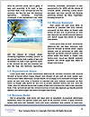 0000088207 Word Templates - Page 4