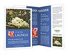 0000088208 Brochure Templates