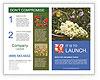 0000088208 Brochure Template