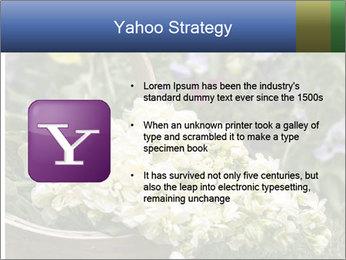Freshly picked cream Matthiola Incana PowerPoint Template - Slide 11