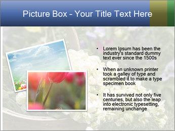 Freshly picked cream Matthiola Incana PowerPoint Templates - Slide 20