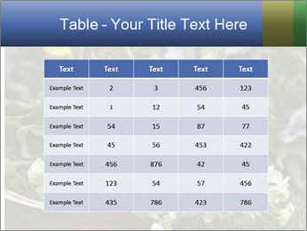 Freshly picked cream Matthiola Incana PowerPoint Templates - Slide 55