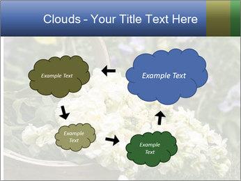 Freshly picked cream Matthiola Incana PowerPoint Templates - Slide 72