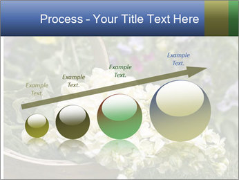 Freshly picked cream Matthiola Incana PowerPoint Template - Slide 87