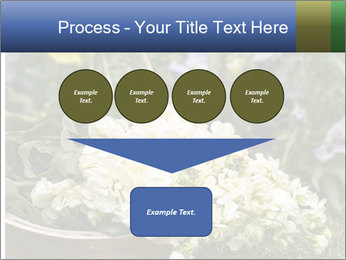 Freshly picked cream Matthiola Incana PowerPoint Template - Slide 93