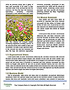 0000088208 Word Template - Page 4