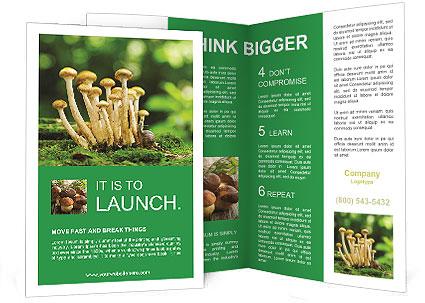 0000088214 Brochure Template