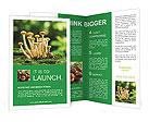 0000088214 Brochure Templates
