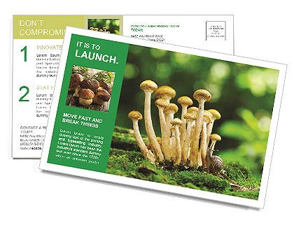 0000088214 Postcard Templates