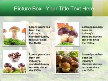 Mushrooms honey agaric in a forest PowerPoint Template - Slide 14
