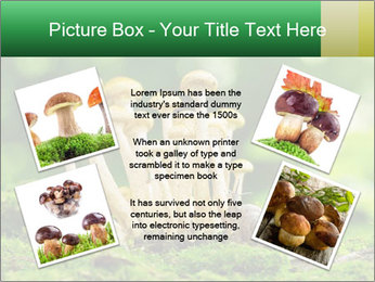 Mushrooms honey agaric in a forest PowerPoint Template - Slide 24