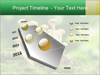 Mushrooms honey agaric in a forest PowerPoint Template - Slide 26