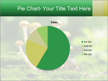 Mushrooms honey agaric in a forest PowerPoint Template - Slide 36