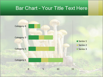 Mushrooms honey agaric in a forest PowerPoint Template - Slide 52