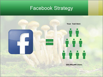 Mushrooms honey agaric in a forest PowerPoint Template - Slide 7